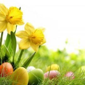 Velikonoční svátky – důležité informace